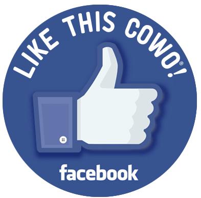 Pagina Facebook Torino Bliss